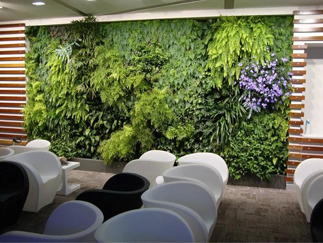 重庆植物墙建议一般室内植物墙选择第一种方法更好.